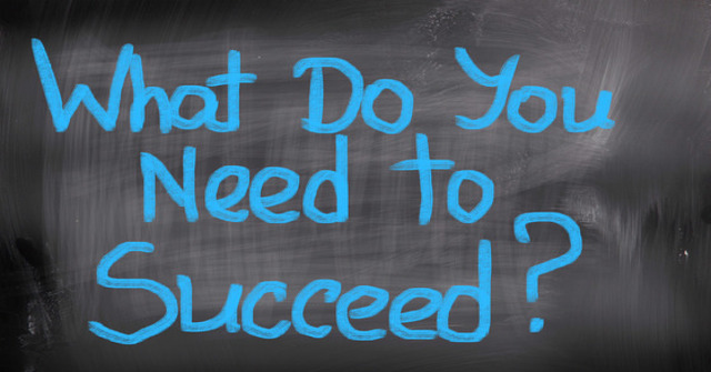 What Do You Need To Succeed